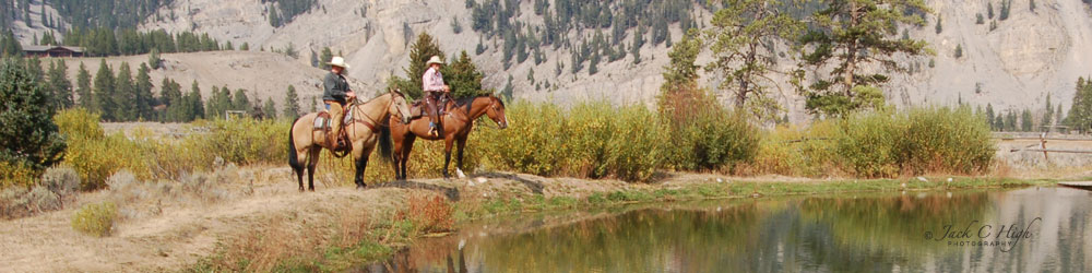 Cowboys on horses at creek